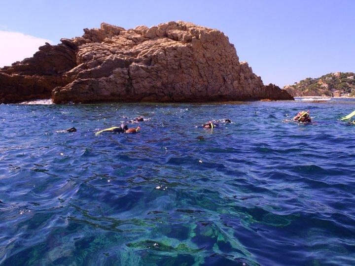 Snorkeling dans la réserve naturelle des iles de Marseille