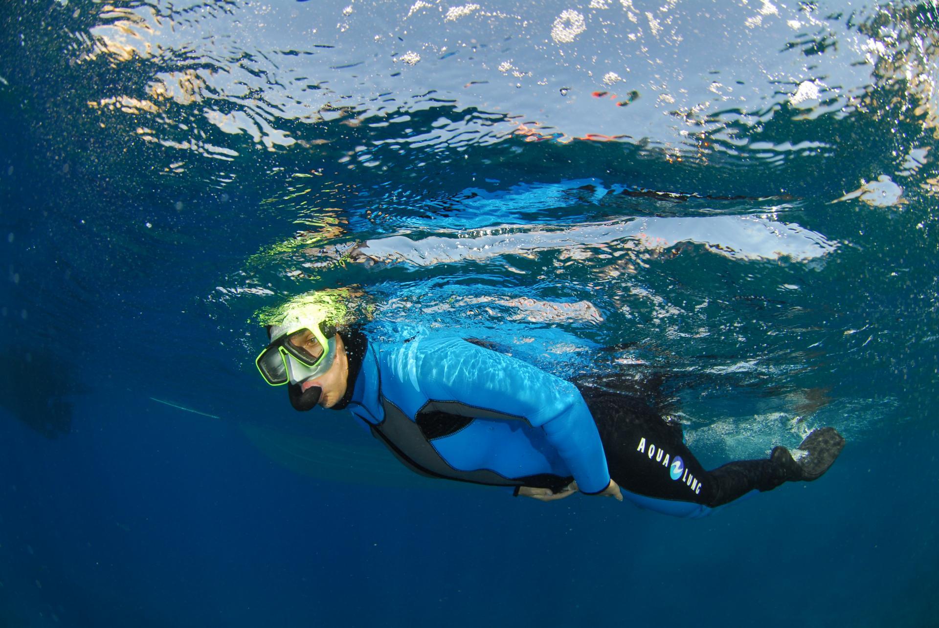 Snorkeling dans la réserve naturelle des iles de Marseille et de carry le rouet