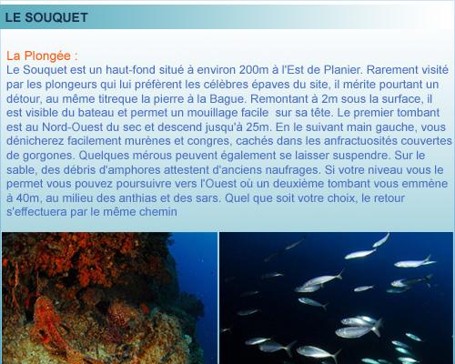 Souquet belle plongée du Planier, rade de Marseille, provence