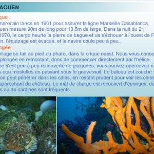 Epave du Chaouen, plongée du Planier, marseille, cote bleue, France