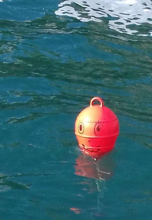 L homme a la mer