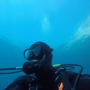 Plongeur de marseille