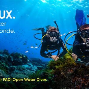 Plongeur open water padi