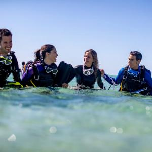 Stage padi open wateur a marseille
